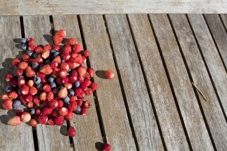 wild strawberry: crop of wild strawberry and bilberry