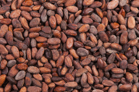 cocoa beans: background of fresh and natural cocoa beans Stock Photo