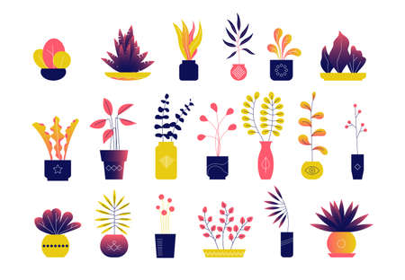 Set of bright modern flat houseplants, leaves and flowers.