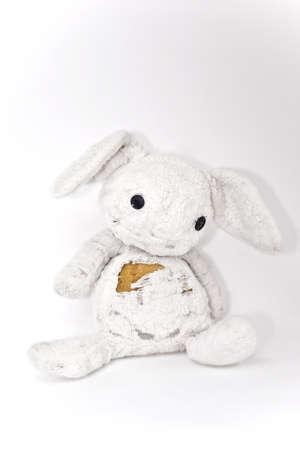 cuddly: cuddly bunny
