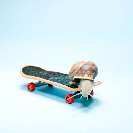 Snail skating