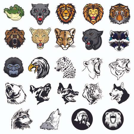 oso pardo: Conjunto ilustrado de los animales salvajes y los perros Vectores