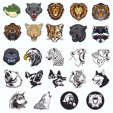 grizzly: Illustrated set of wild animals and dogs