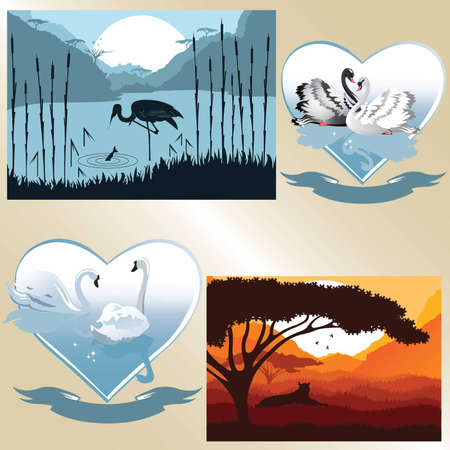 Set of vector pictures on romantic and natural theme  Nature and couple of swans Vector