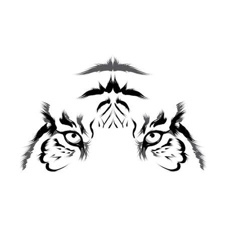black and white panther: Tiger  head outline vector  Illustration