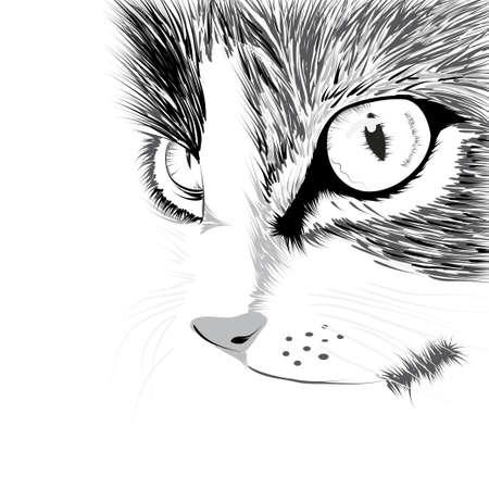 Silhouette noire de Vector illustration chat Illustration