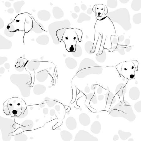 huellas de perro: patas del perro patrón de estilo manos libres Vectores