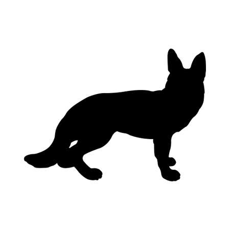 black fox: Fox silhouette, isolated on white background