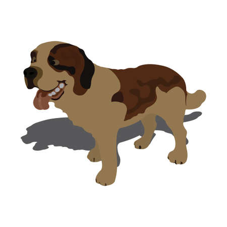 Vector illustration of dog, isolated on white background Vector