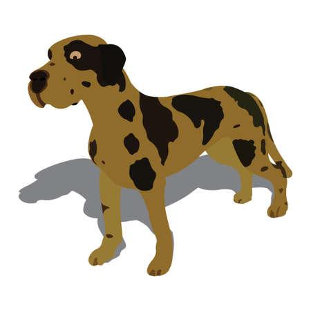 realist: Vector illustration of dog, isolated on white background