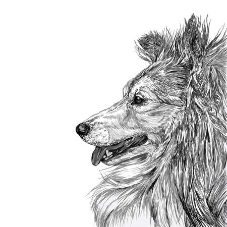 dog pen: Sketch of Siberian dog black and white