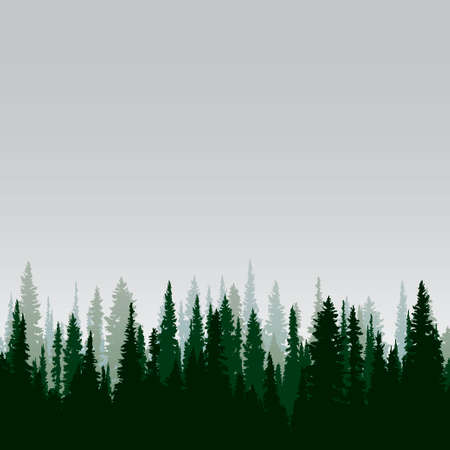 Panorama of wild coniferous forest Иллюстрация