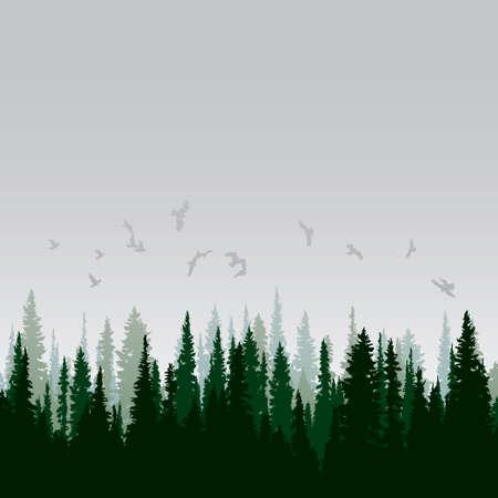 야생 침엽수 숲의 파노라마 일러스트