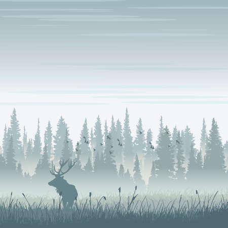 산에서 야생 사슴 일러스트