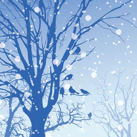 panorama: Panorama of wild coniferous winter forest Illustration