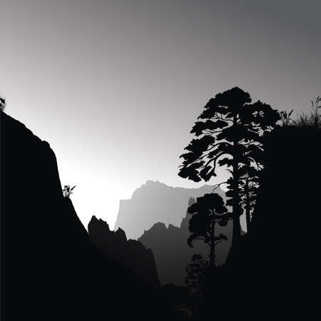 coniferous forest: Ilustración vectorial con el bosque oscuro en la mañana