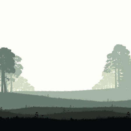 fog forest: Panorama of wild coniferous forest Illustration
