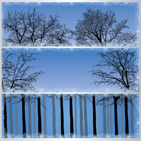 horizons: Set of winter forest banners. Vector illustration