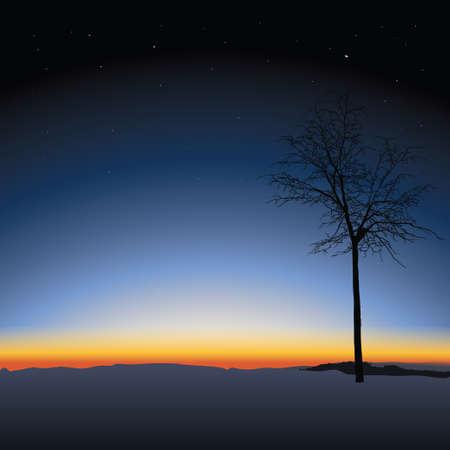 Lonely tree on Nature sunset background Stock Illustratie