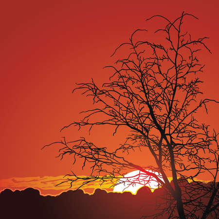 beautiful sunset in mountains Natural background