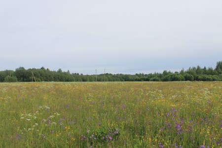 Beautiful nature landscape Stockfoto