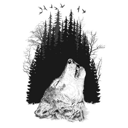 Wolf silhouette on forest background. Illustration