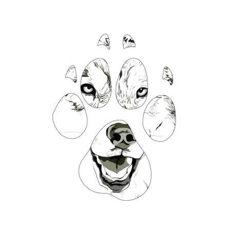 silhouette animal trail. Vector illustration
