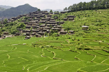 Large rice terraces with ethnic Chinese minority village