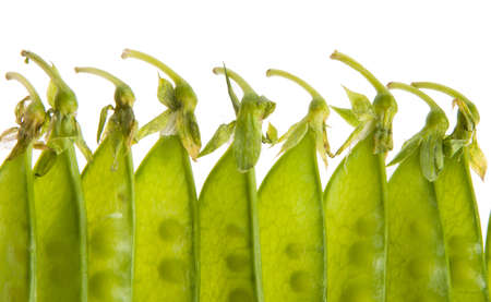 Closeup of green pea pods isolated