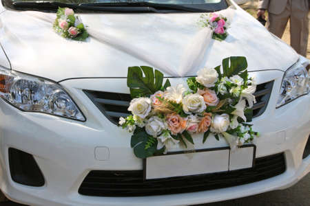 marriageable: Decorated cars by the wedding day in park Stock Photo