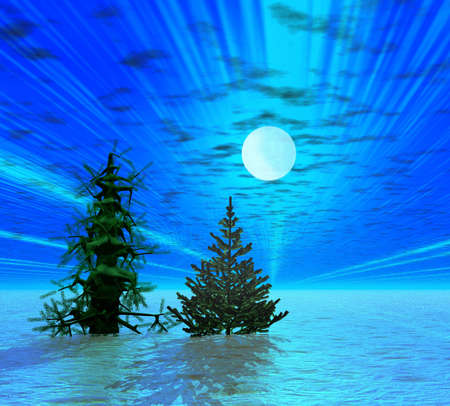 Two Christmas trees in moonlight photo