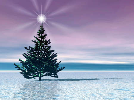 Christmas tree . Star Stock Photo - 609558