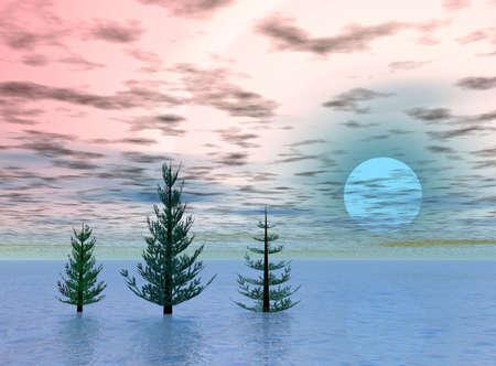 Christmas trees on sunrise Stock Photo - 613897