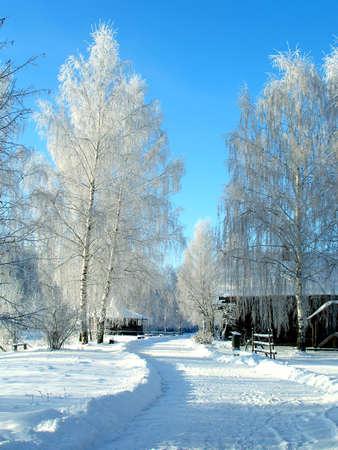 Winter landscape Stock Photo - 779020