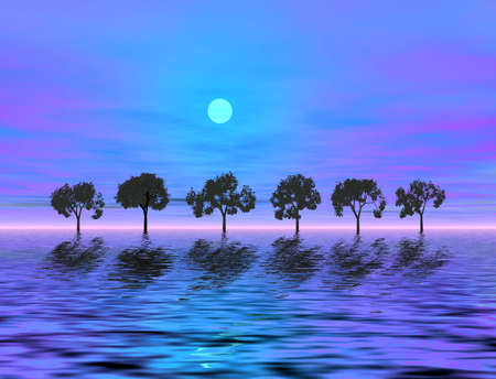 Moon light. Trees Stock Photo - 847791