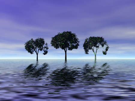 Trio trees Stock Photo - 848877