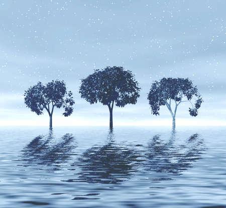 Trio of trees Stock Photo - 848797