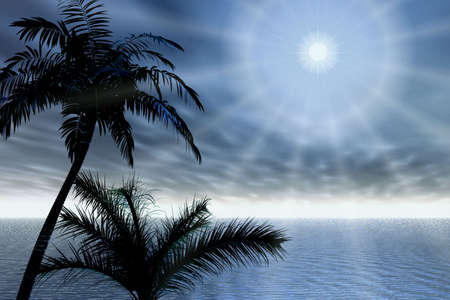 Evening. Palms and rays Stock Photo - 1216088