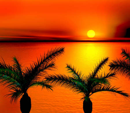 tree disc: Tropical sunset.3d Illustration