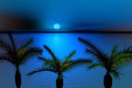 moonlit: Moonlit night and palms. Landscape .3d Illustration