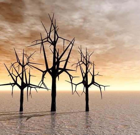 Sunrise . Trees. 3D image Stock Photo - 1678092