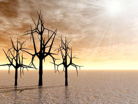 Sunrise . Trees. 3D image photo