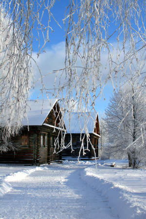Winter nature. Russian country Stock Photo - 2073381
