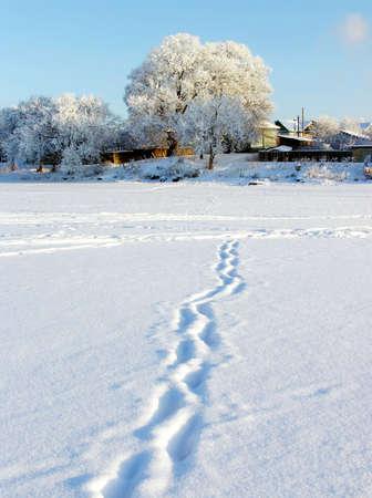 Winter nature. track Stock Photo - 2073371