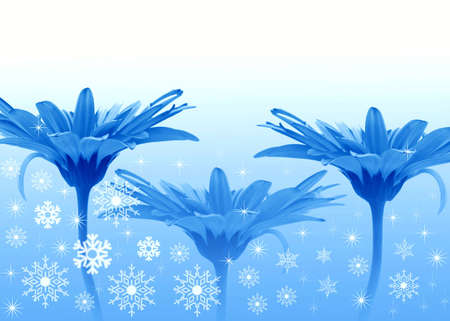 illustrates: Three Blue flowers Stock Photo