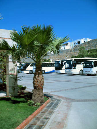 morn: Turkey. Coach park