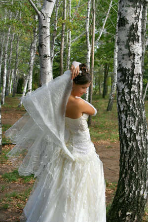 marriageable: Beautiful bride in wedding-day in  birch grove Stock Photo