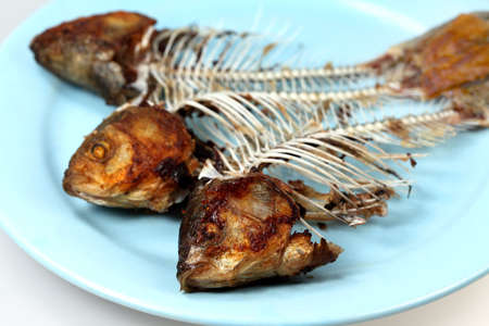 crucian: Crucian fish bones on a plate