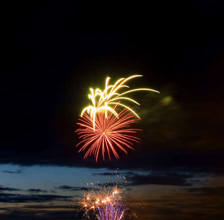 salvoes: Celebratory bright firework in night sky