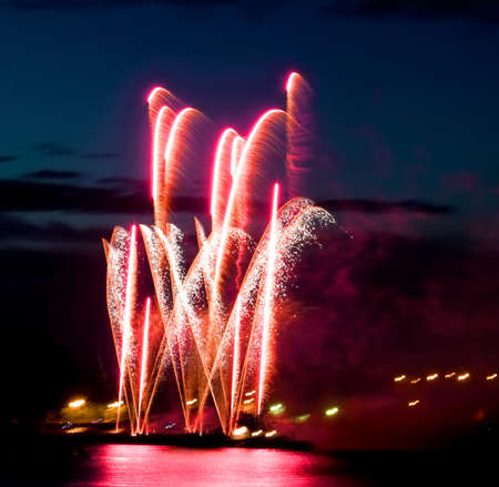 salvoes: Celebratory bright firework in night sky